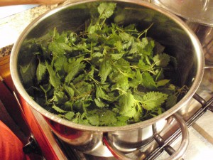 Stinging Nettles Pasta