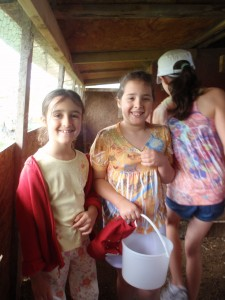 Collecting Eggs from the Chicken Coop at Smith Meadows