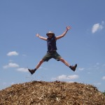 Jumping on a pile of wood chips.  Risk Level: Splinters.