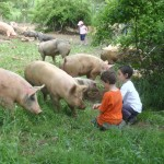 Kids, pigs, and a perfect spring day.  What else is there to say?