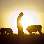 Could a new day be dawning in Washington? America's farmers are ready to get to work.