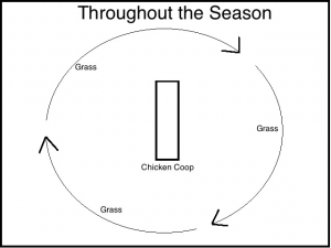 Throughout the Season
