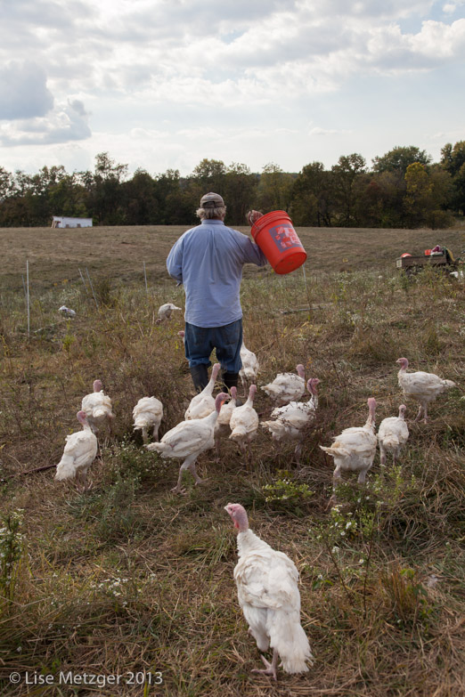 how to cook a pastured turkey